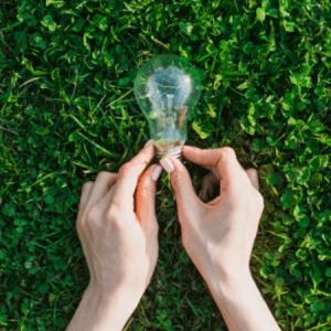 Como politicas de sustentabilidade impactam seu valuation