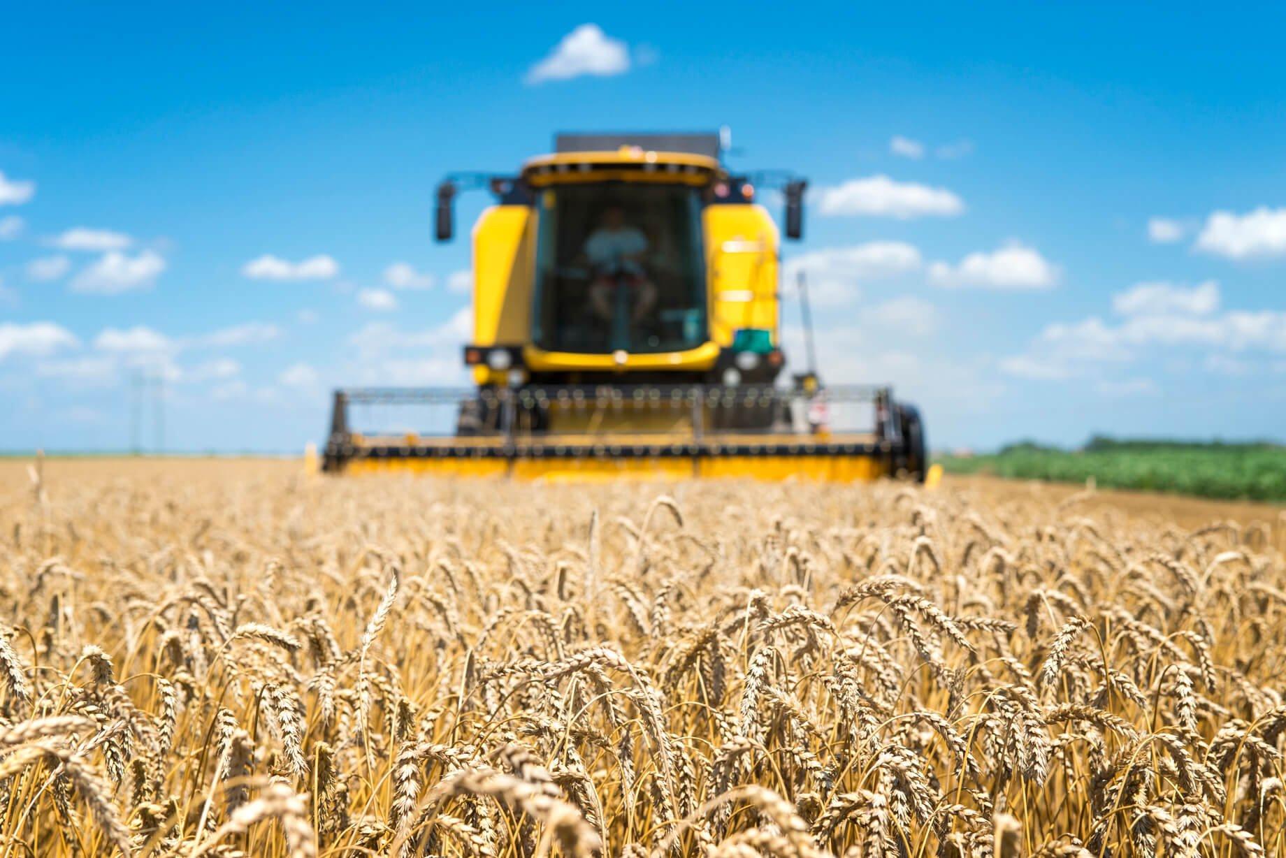 ativo biologico colheita